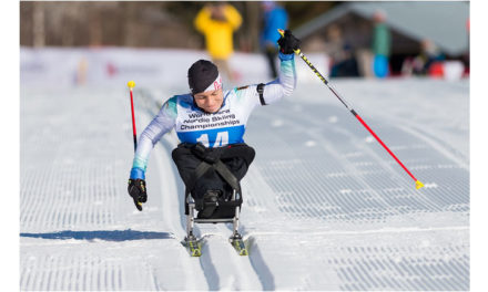 Para Ski nordisch Gesamtweltcup